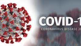 Notre sélection de produits - COVID-19