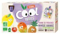Vitabio Cool Fruits Pomme Mangue Ananas à TOURS