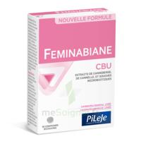Pileje Feminabiane Cbu 30 Comprimés Bicouches à TOURS
