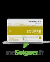 Granions De Soufre 19,5 Mg/2 Ml S Buv 30amp/2ml à TOURS
