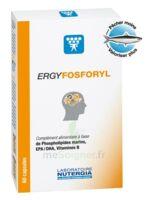 Ergyfosforyl Caps B/60 à TOURS