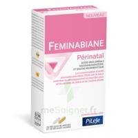 Pileje Feminabiane Périnatal 28 Gélules Blanches Et 28 Gélules Jaunes à TOURS