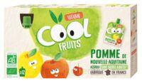 Vitabio Cool Fruits Pomme à TOURS