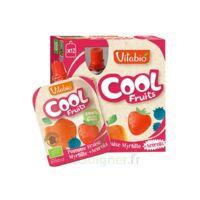 Vitabio Cool Fruits Pomme Fraise Myrtille à TOURS