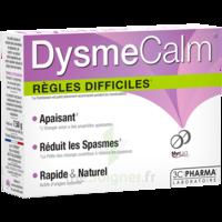 Dysmecalm Comprimés B/15 à TOURS