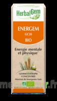 Herbalgem Energem Solution Buvable Bio Fl Cpte-gttes/30ml à TOURS