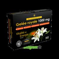Sid Nutrition Oligoroyal Gelée Royale 1000 Mg 5g _ 20 Ampoules De 10ml à TOURS
