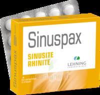 Lehning Sinuspax Comprimés à Croquer 3plq/20 à TOURS